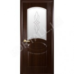 Durvis ar karbu  FORTIS R  ar stiklu