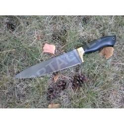Pavāra nazis